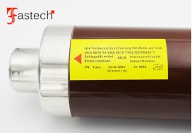 SIBA Fuses 3002013.160A 12kV High Voltage Fuse protective tube